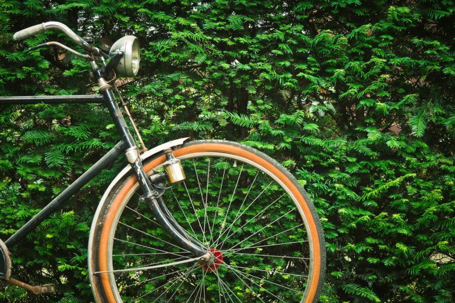 Fahrradtour durch Salzburg