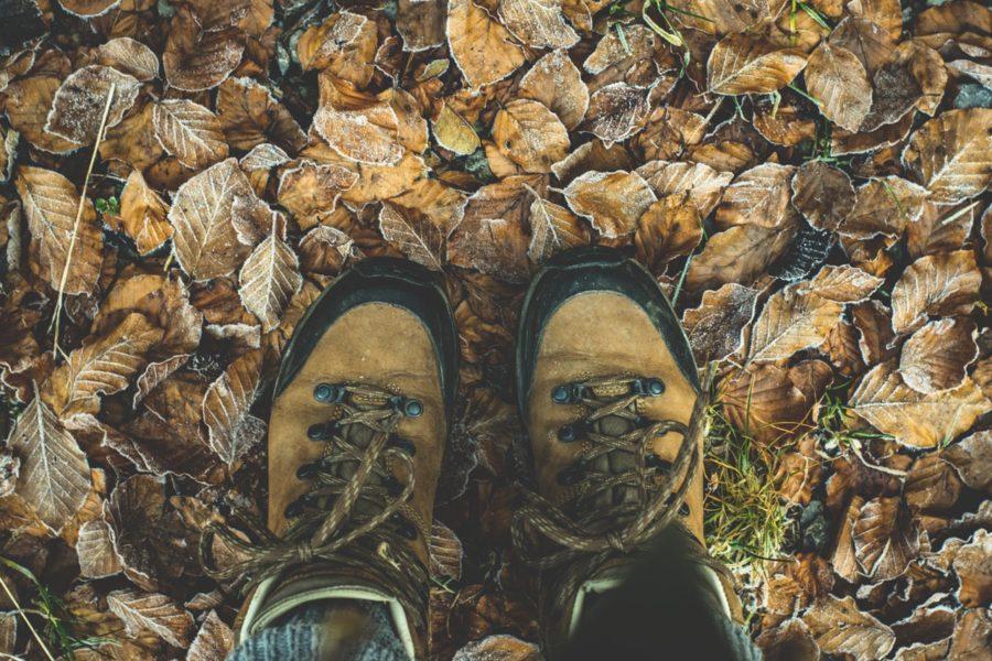 Wanderschuhe in Herbstlaub