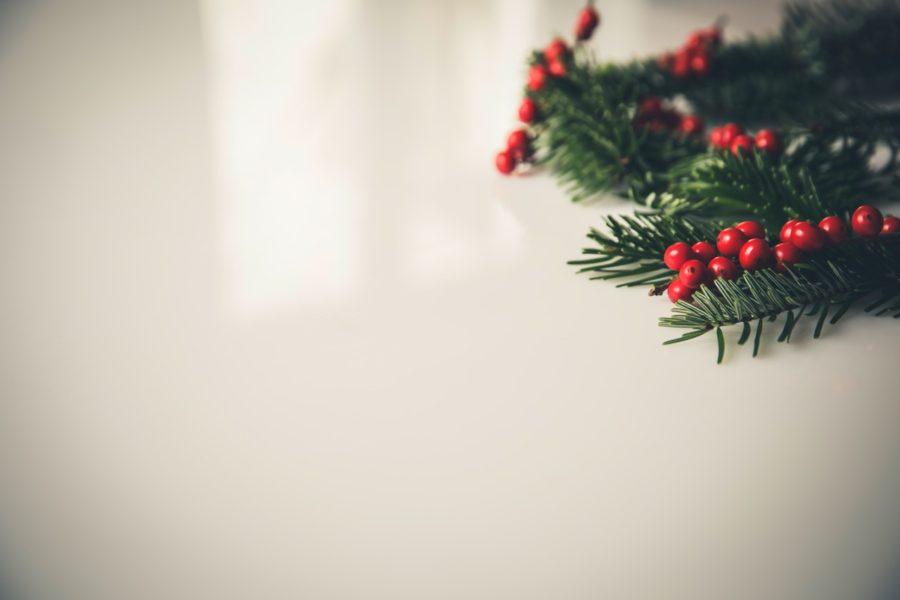 Weihnachtsstrauch mit roten Früchten auf weißem Tisch
