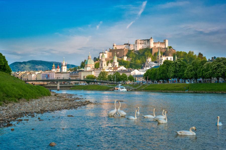 Blick auf die Salzach mit Schwaenen und die Festung Hohensalzburg