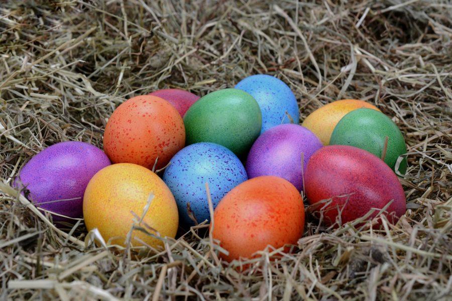 bunte Ostereier in einem Nest