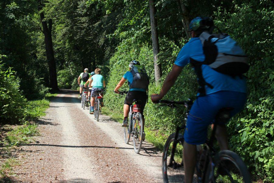 Eine Gruppenradtour durch den Wald