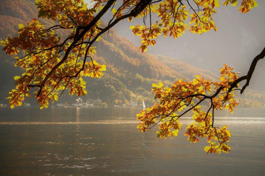 Herbst in Salzburgs Natur.
